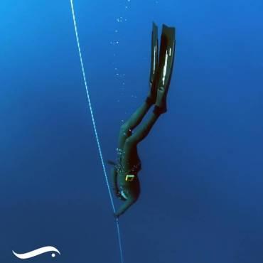 Carnet de plongée numérique